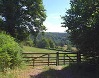 Fadmoor gate