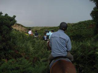 Wales july 2010 301