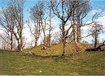 150px-Hembury_Castle_-_geograph.org.uk_-_76408